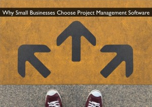 Why (and How) a Small Business Chooses Project Management Software