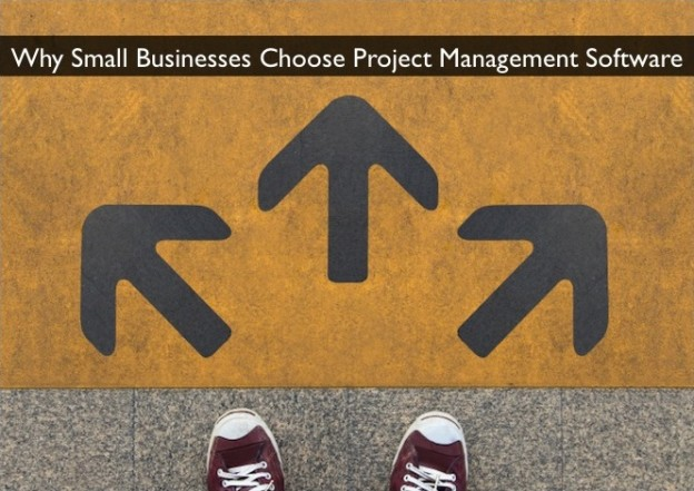 small business management project Best project portfolio management software | project portfolio management software enables the user, usually management or executives within the organisation, to review the portfolio, which.