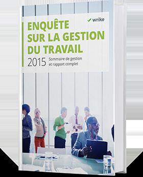 Disponible : Rapport sur la gestion du travail 2015