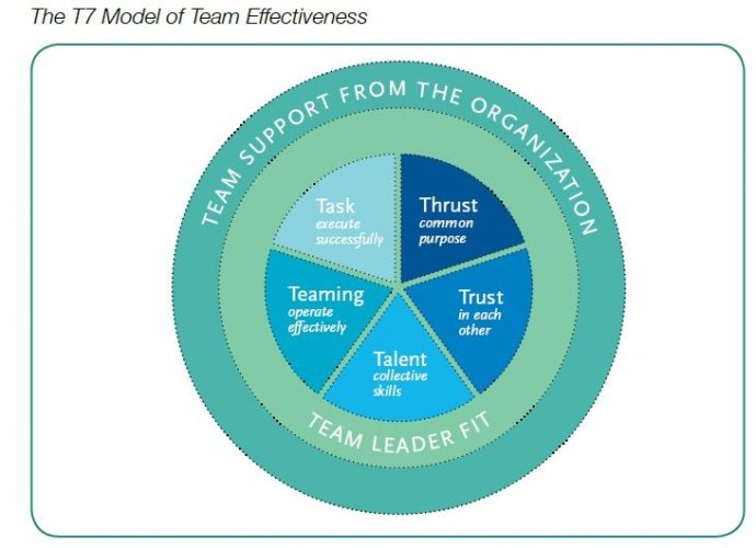 review the effectiveness of the team in achieving the goals