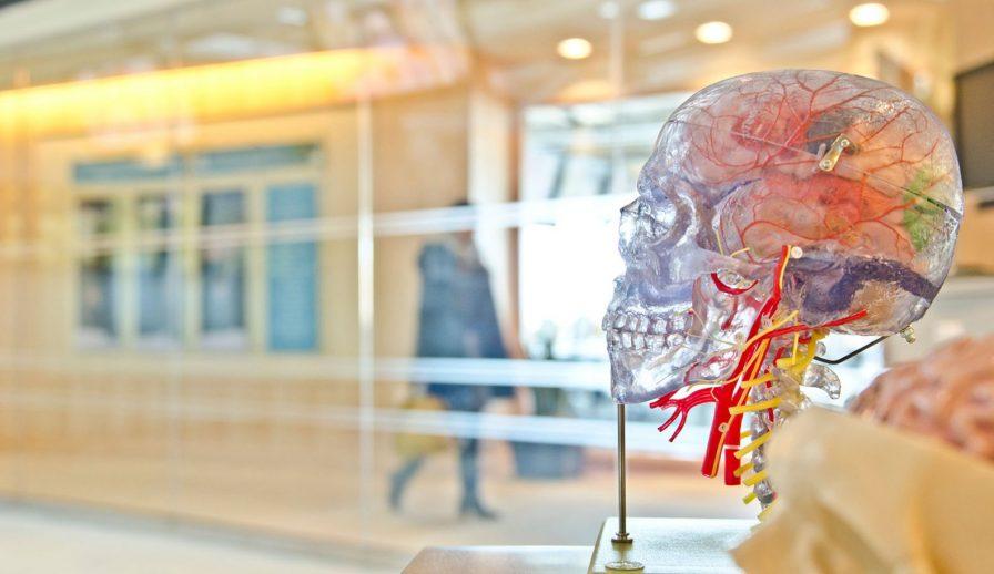 7 Factores Psicológicos Del Consumidor Que Todo Responsable