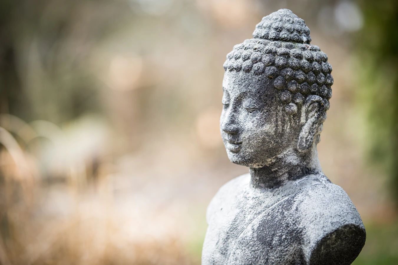 5 Ways to Bring Mindfulness to the PMO 2