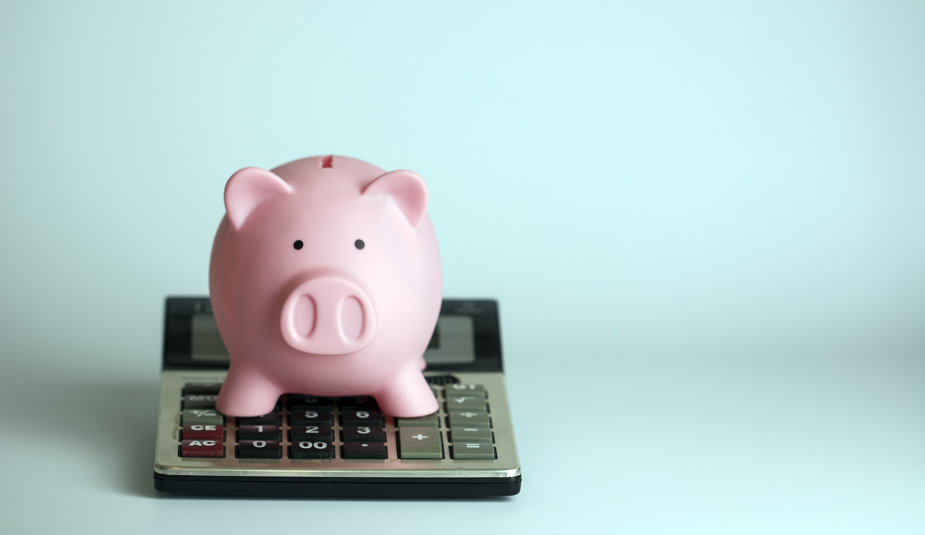 Costing, Scoping, Reporting: Introducing Budget Management for Professional Services