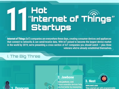 "11 ""Internet of Things"" Startups to Watch  (Infographic)"