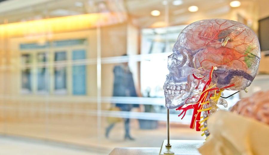 7 factores psicológicos del consumidor que todo responsable de marketing debería dominar