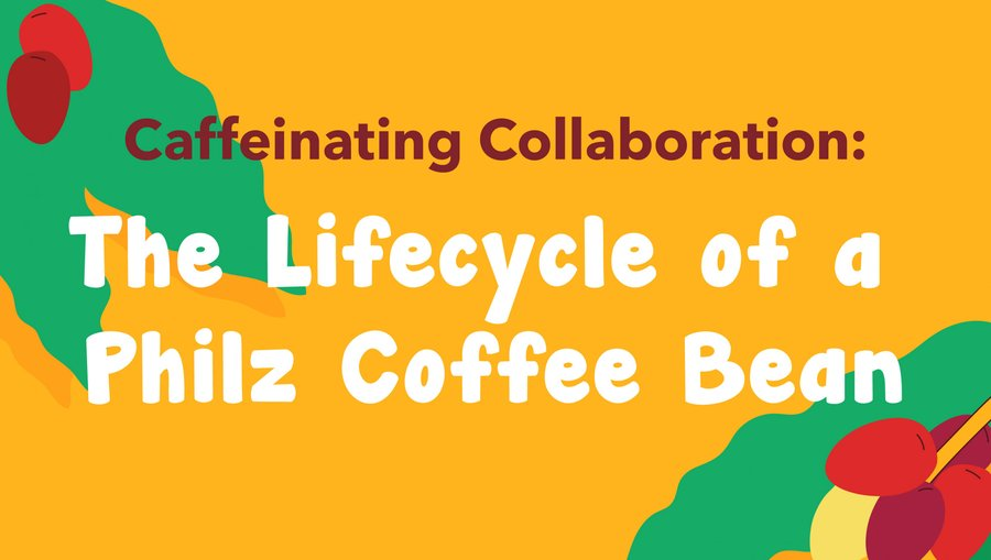 Caffeinating Collaboration: The Lifecycle of a Philz Coffee Bean
